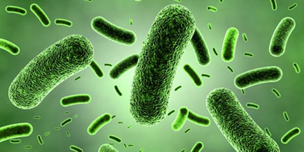 Картинки по запросу infections
