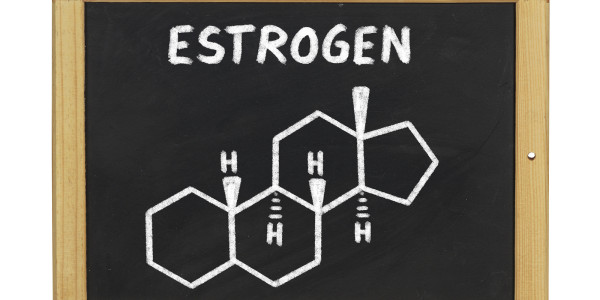 How To Increase Estrogen The Healthy Way