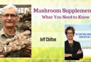 Mushroom Supplements